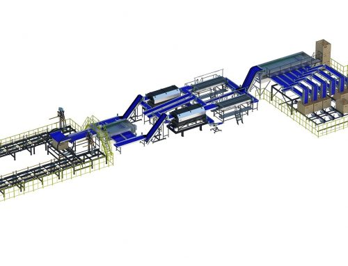 Onion processing line double A3 series (1)