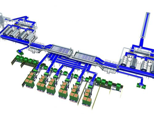 Onion processing line A3 series